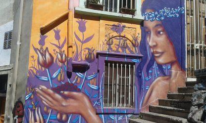 street art valparaiso (6)